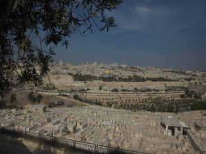 The Old City can be seen from the Mount of Olives.