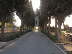 The Tantur entrance is flanked by trees.