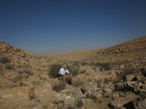 In the wadi I found pools of water.